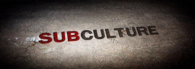 مقابله با خرده فرهنگ های مخرب لازم است